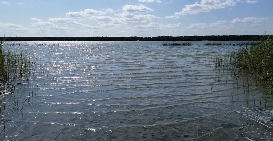 Озеро Шеломенцево (Песчаное)
