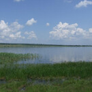 Озеро Тагарское в Красноярском крае