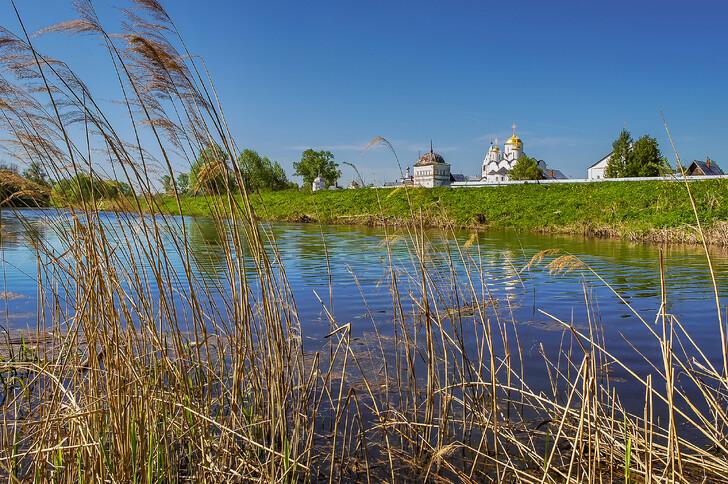 Вид на Покровский монастырь с левого берега Каменки