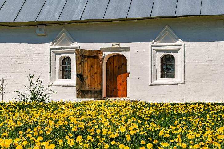 На территории Покровского монастыря