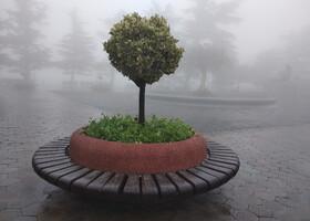 Мтацминда в тумане