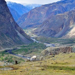 Какие образы Алтая всплывают в нашем воображении? Наверное такие...вид на долину Чулышман с перевала Кату-Ярык.