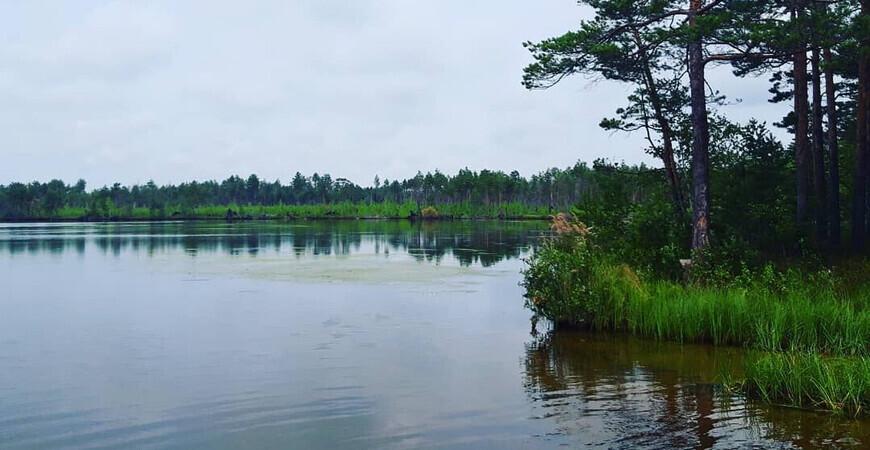 Озеро Щучье в Тавдинском районе