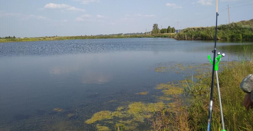 Озеро Алакуль в Курганской области