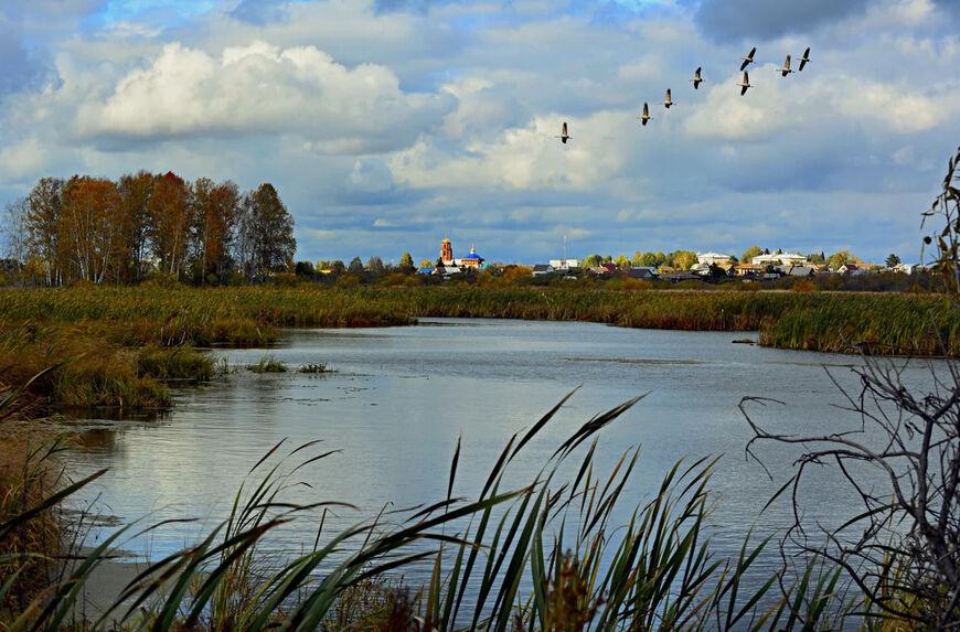 Некрасовские озера фото