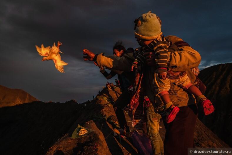 Жертвоприношения, молитвы и вулкан. Индонезийский праздник Ядня Касада (фото)