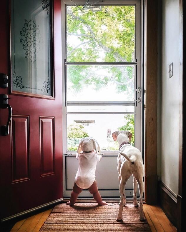 Дружба маленького мальчика и собаки, которая перестала доверять людям после просмотра этих фото хочется завести четвероного друга
