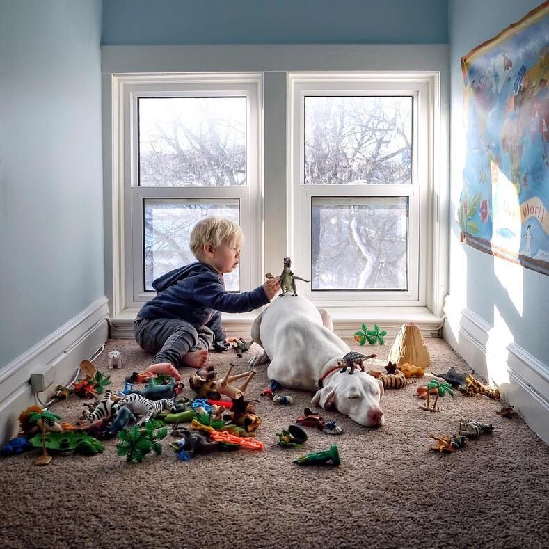 Дружба маленького мальчика и собаки, которая перестала доверять людям: после просмотра этих фото хочется завести четвероного друга