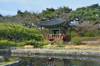 Южная Корея потребует тесты у туристов из четырёх стран