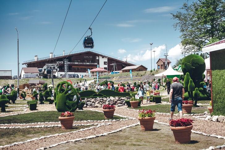 Инста-парк Зеленая поляна