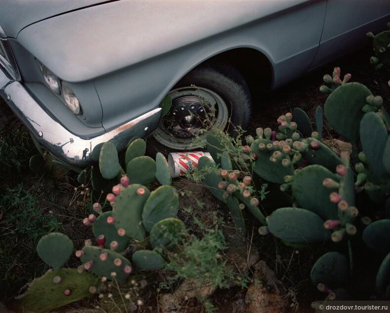 Дорога без попутчиков. Одноэтажная Америка на снимках Арно Монтэгарда (фото)