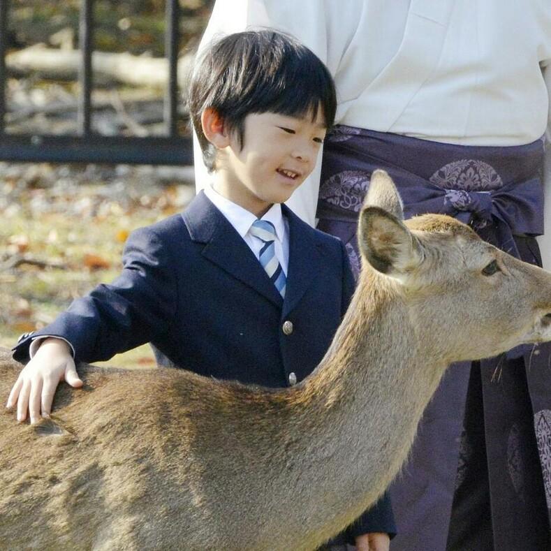 Единственный наследный принц Японии: ему всего 13 лет, а на его жизнь уже покушались