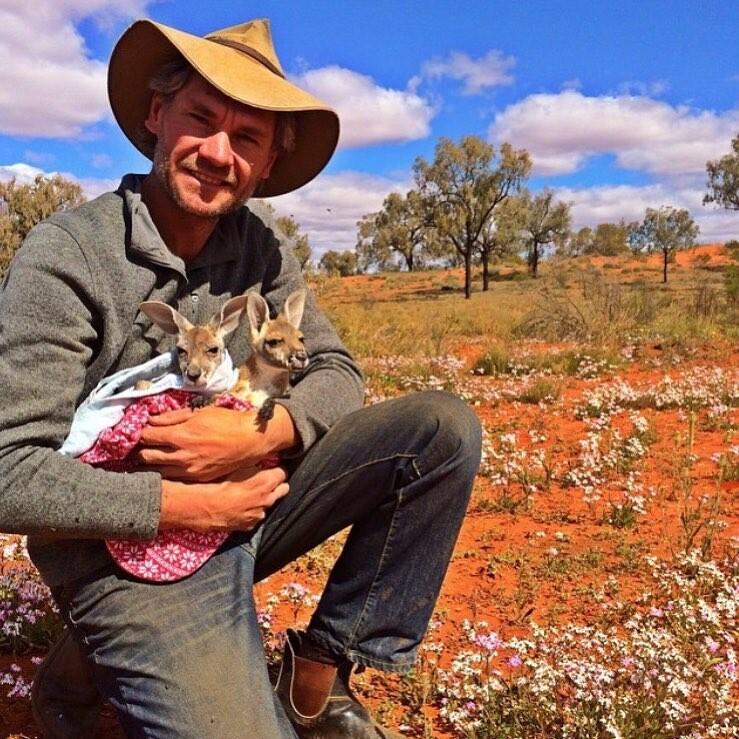 Один добрый поступок навсегда изменил его жизнь мужчина спас малыша кенгуру и стал телеведущим