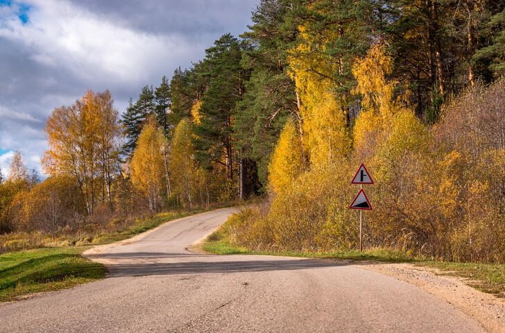 Природа Костромской области