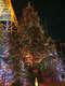 2-ой день в Японии. Деревня Омия, музей бонсай, сад Рикугиэн и Токийская телебашня