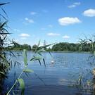 Озеро Карповское в Калининграде
