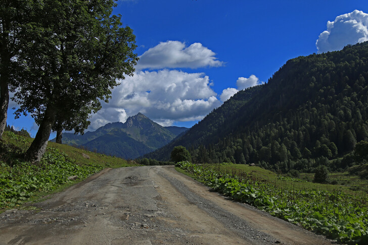 Природа горной Абхазии