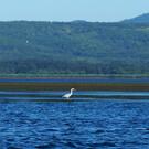 Озеро Буссе