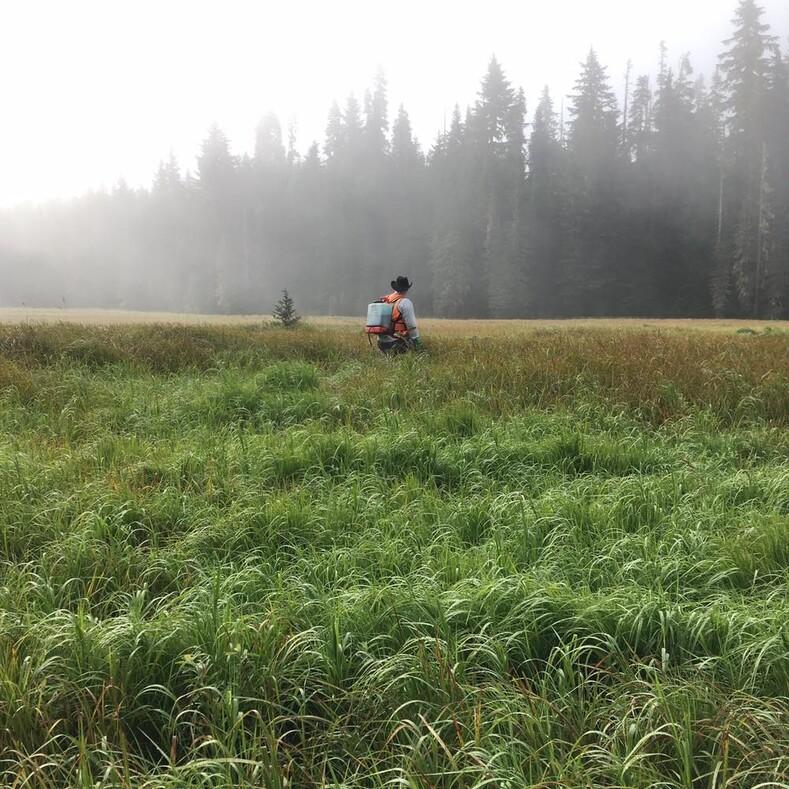 Фотограф дикой природы хотел сделать снимки рыси, а получил кадры с парнем-весельчаком