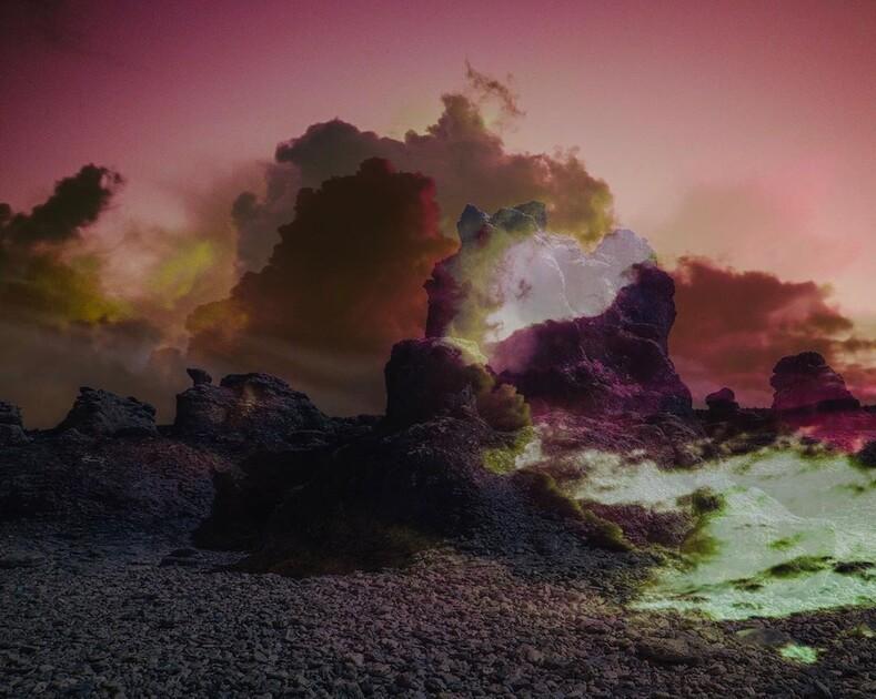 Тот случай, когда камеру берет в руки нейробиолог фантастические снимки ночного леса, заставляющие посмотреть на мир под другим углом