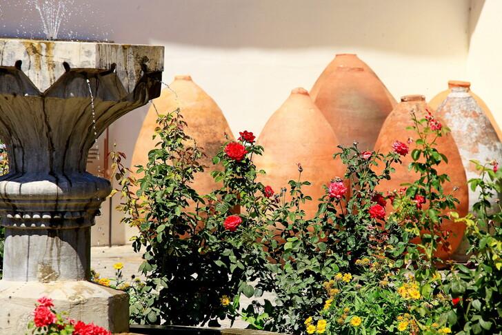 Крымская роза в Бахчисарае