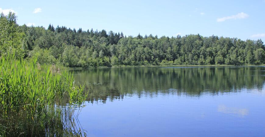 Круглое озеро в Брянске