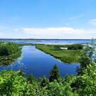 Белая гора в Воронеже