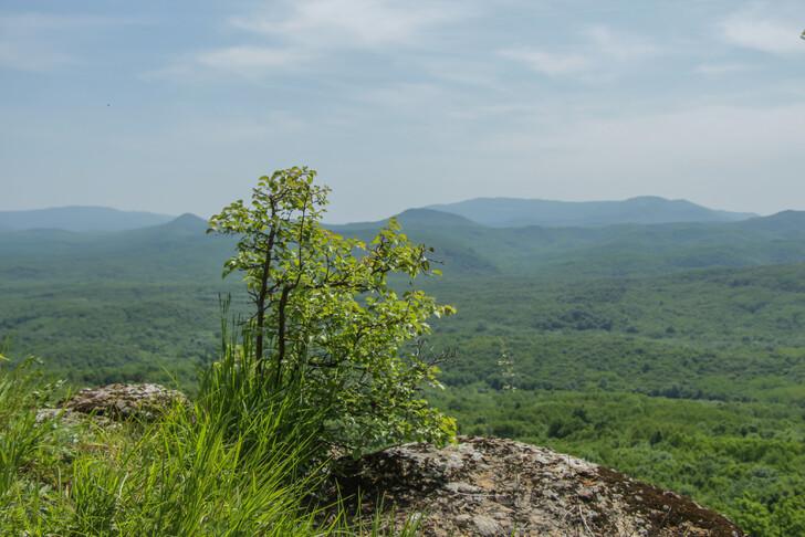 На вершине скалы Желтые монастыри