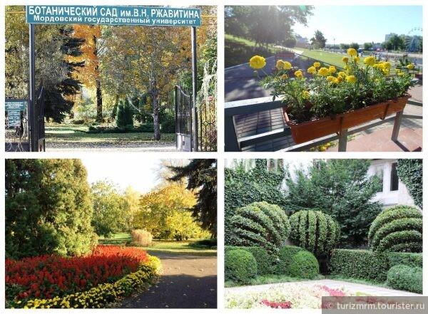10 фактов о Ботаническом саде им. В.Н. Ржавитина в Мордовии