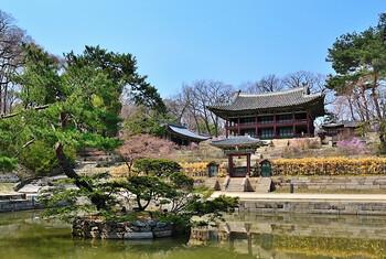В Южной Корее обсуждают введение общенациональных ограничений
