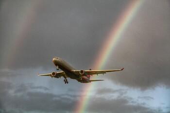 Россия возобновила международные рейсы из Казани, Калининграда и Новосибирска