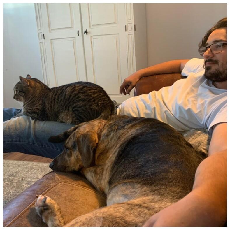 «Никаких кошек и собак!»: 16 фото пап, которые сначала были категорически против питомцев, но потом что-то пошло не так