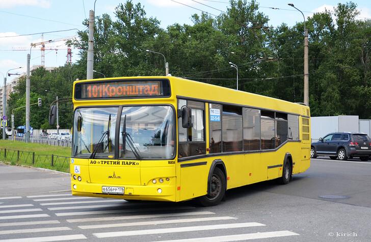 Автобус № 101
