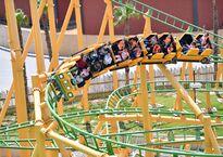 family-coaster-1.jpg