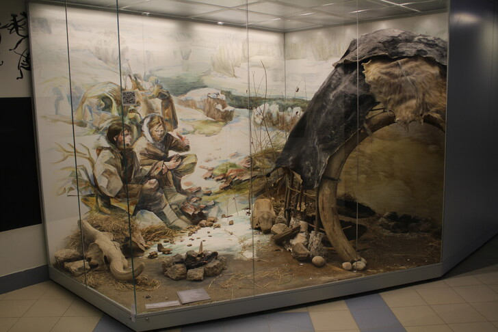 Экспозиция в музее истории и археологии