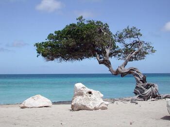 Туриста на Сардинии оштрафовали на 1000 евро за вывоз местного песка