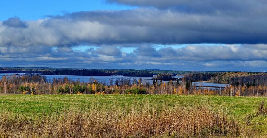Озеро Заозерье в Новгородской области