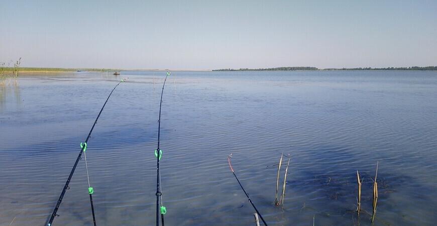 Озеро Рига в Курганской области