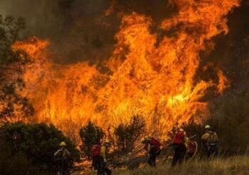 Западное побережье США страдает от сильных лесных пожаров