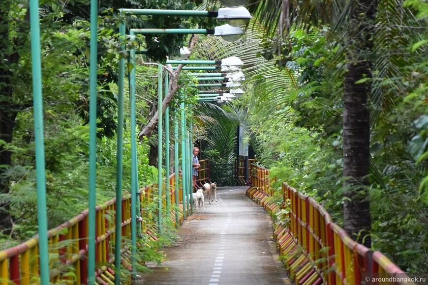 Пешком по зелёным лёгким Бангкока
