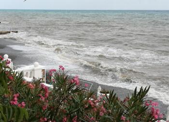 В Сочи хотят создать остров для туристов