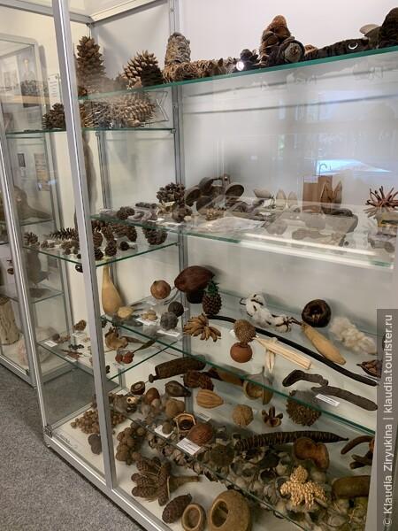 Провинциальный геологический музей с уникальными экспонатами