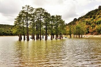 Высохло Кипарисовое озеро вАнапе