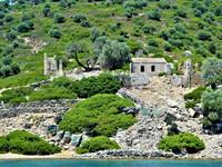 Остров Камелия