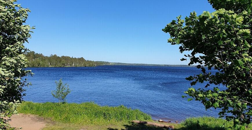 Мичуринское озеро