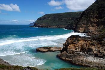 В Австралии на берег выбросились сотни китов