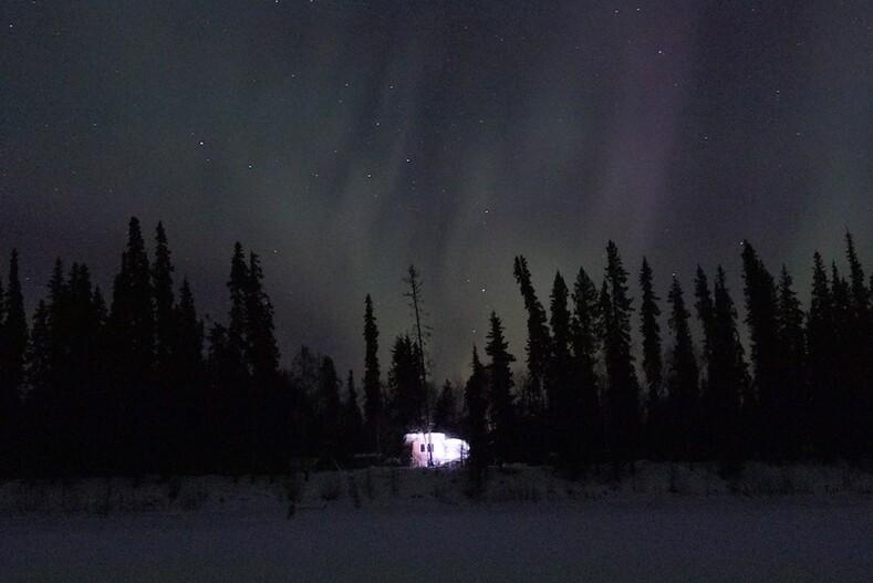 Семья прожила больше 20 лет в лесу за 400 километров от цивилизации: фото-история семьи Атчли в диких краях Аляски