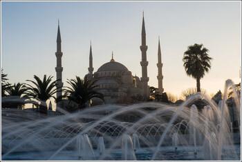 Туристов предупреждают об опасных комарах в Турции
