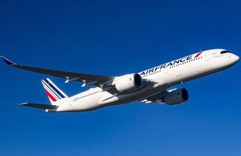 Air France-KLM продержится на госпомощи не более года