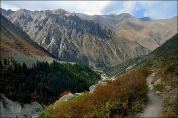 Киргизская авиакомпания возобновляет полёты в Москву